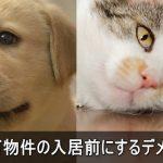 ペット可の注意